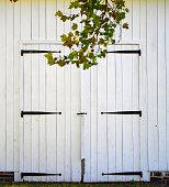 Barn Double Door