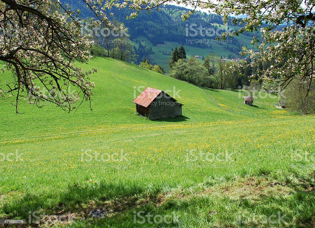 Barn in the German Alps royalty-free stock photo