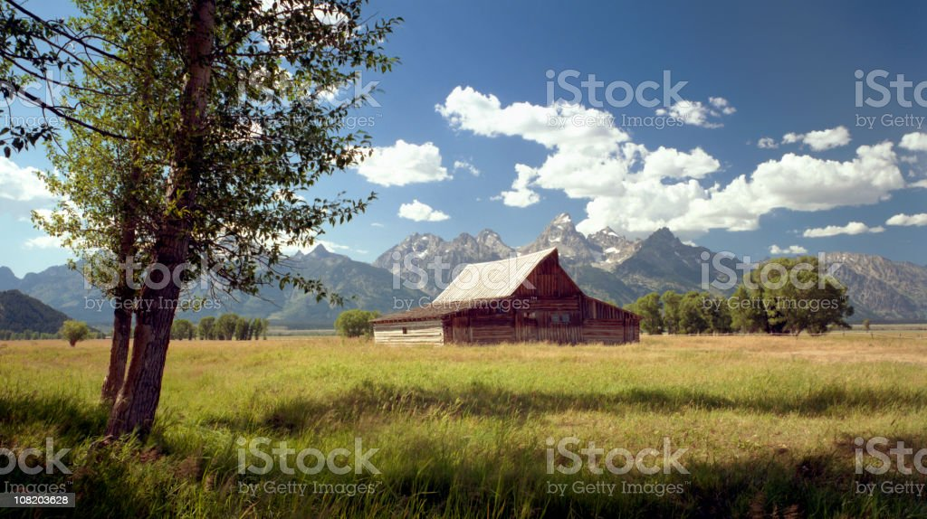 Barn in the Middle of Field, Wyoming stock photo