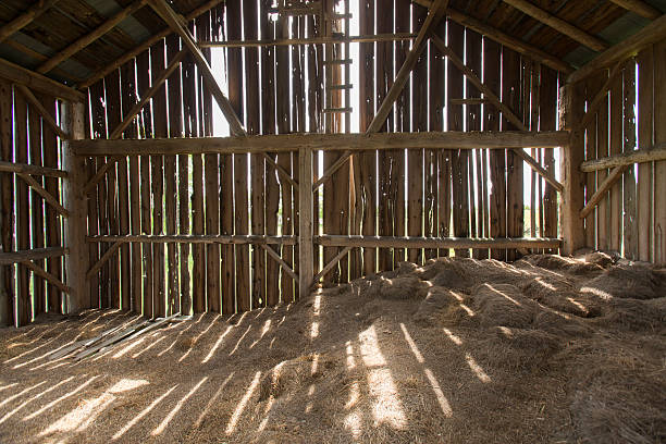 Barn Interior barn interior pictures, images and stock photos - istock