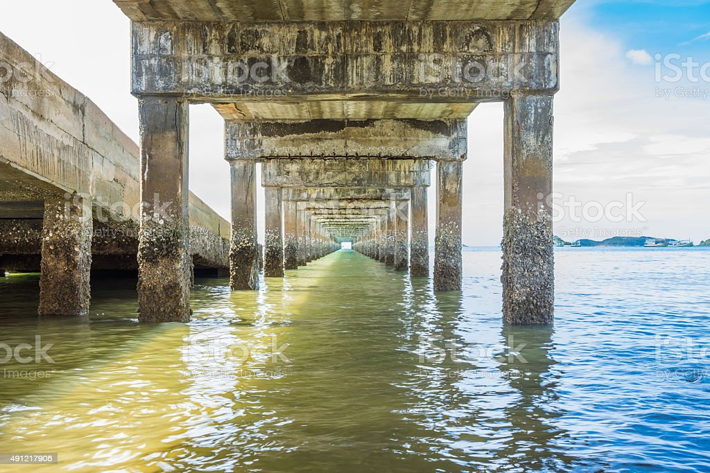 Entenmuscheln unter jetty Lizenzfreies stock-foto