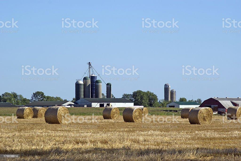Barns and Bales royalty-free stock photo