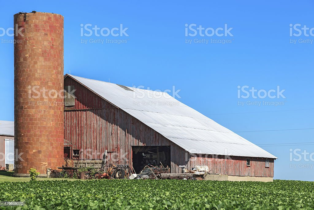 Barn,Silo and Soybean Field royalty-free stock photo