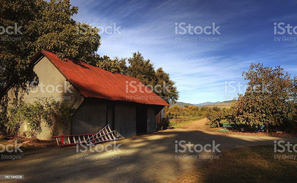 barnyard at vineyard stock photo