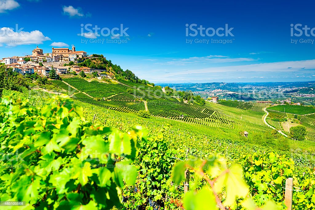 Barolo vineyards stock photo