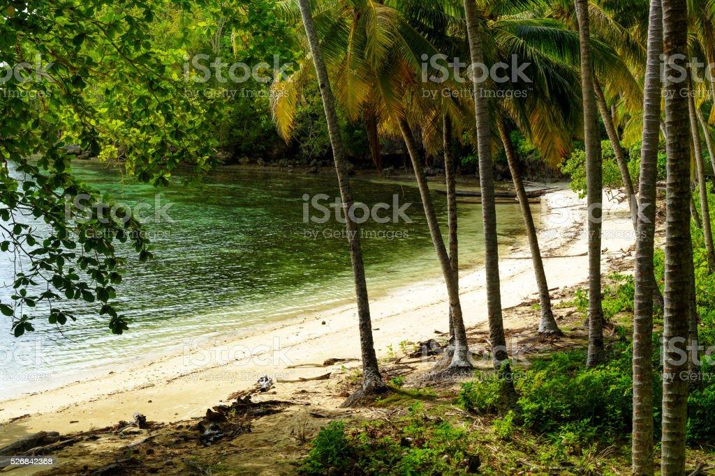 Barracuda beach on Kadidiri island. Indonesia stock photo