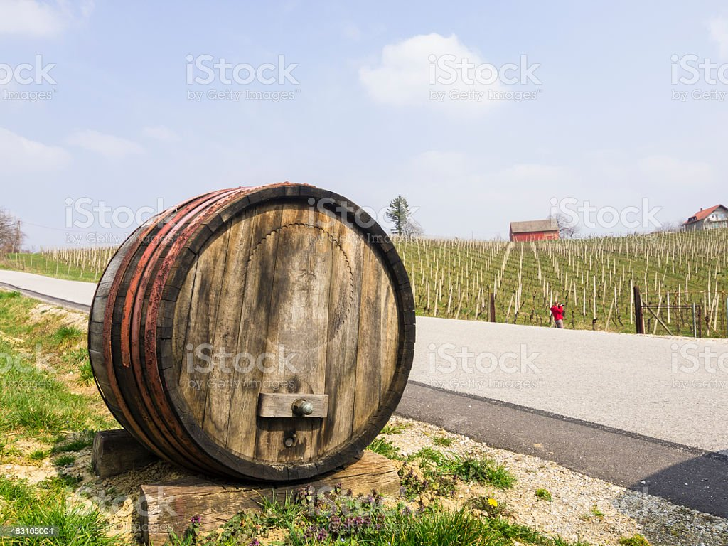 Barrel in Vineyards country in Jeruzalem region, Slovenia stock photo
