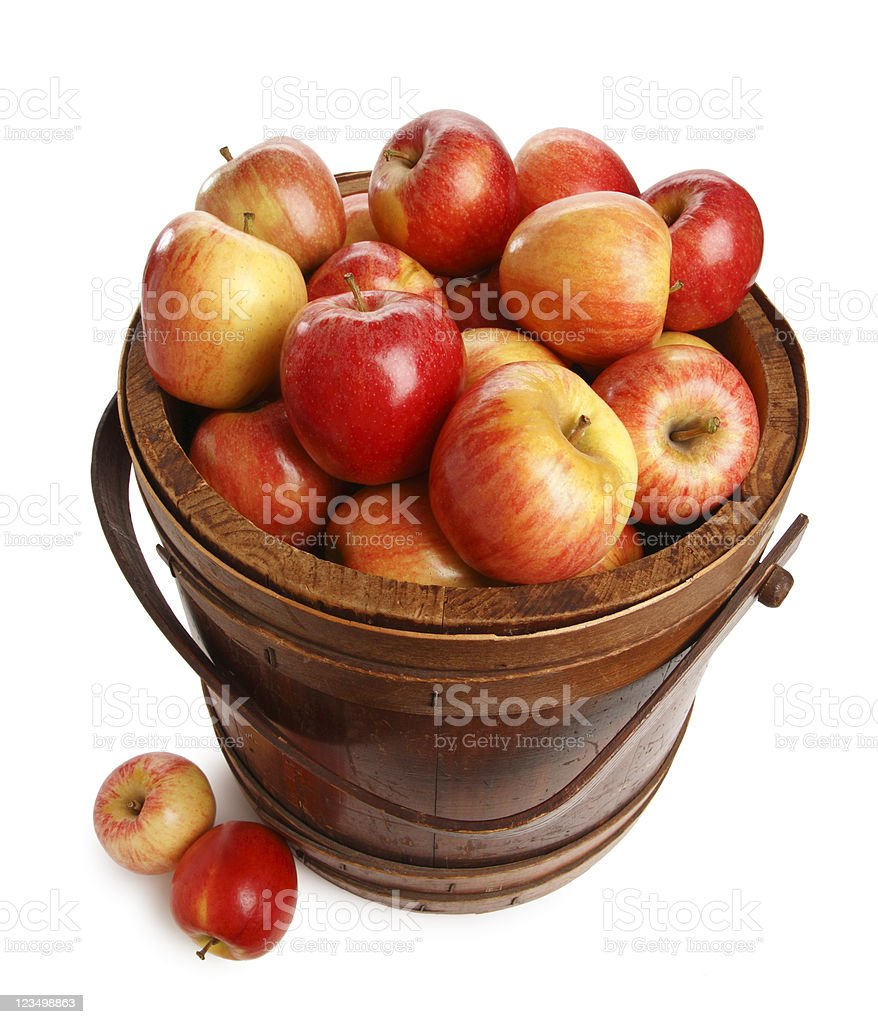Barrel of Apples stock photo