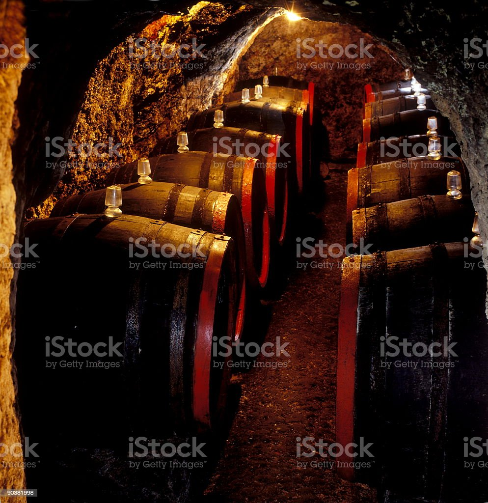 Barrels in a wine cellar royalty-free stock photo