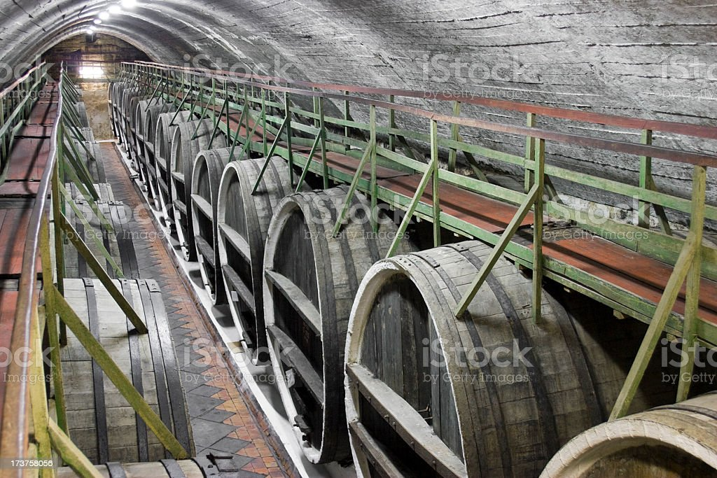 barrels of wine in the cellar royalty-free stock photo