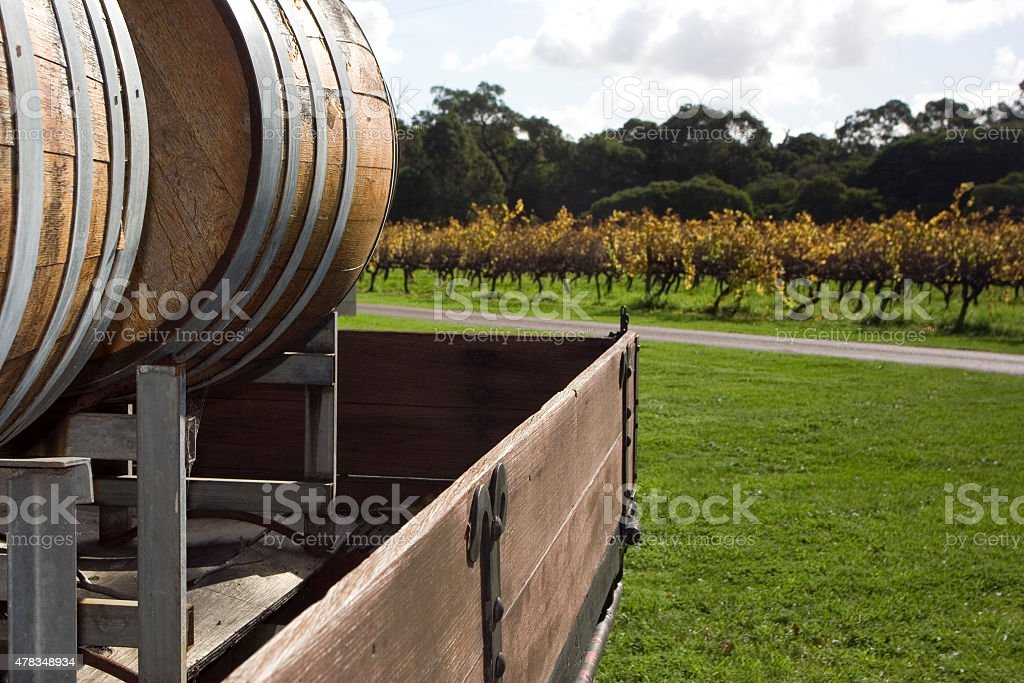 Barrels of Wine stock photo