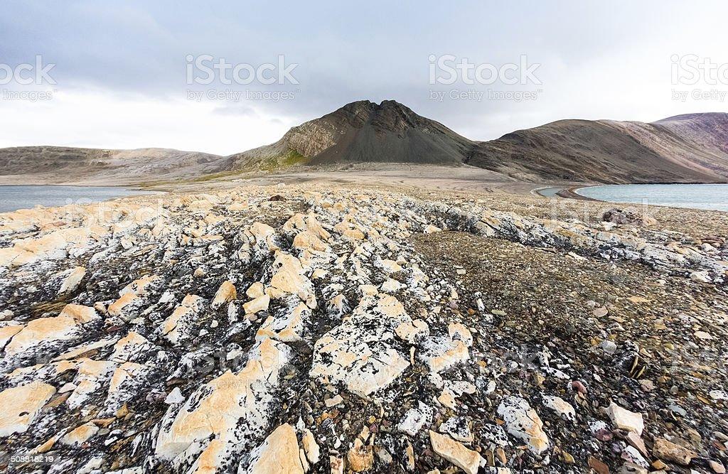Barren Arctic Landscape stock photo