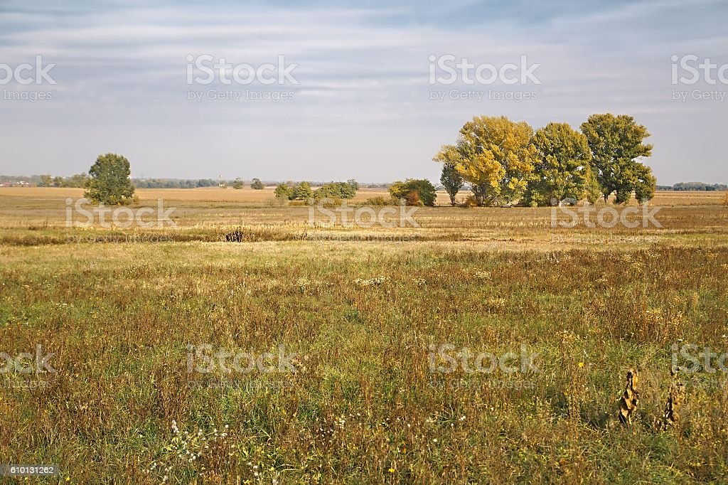Barren field in the countryside stock photo