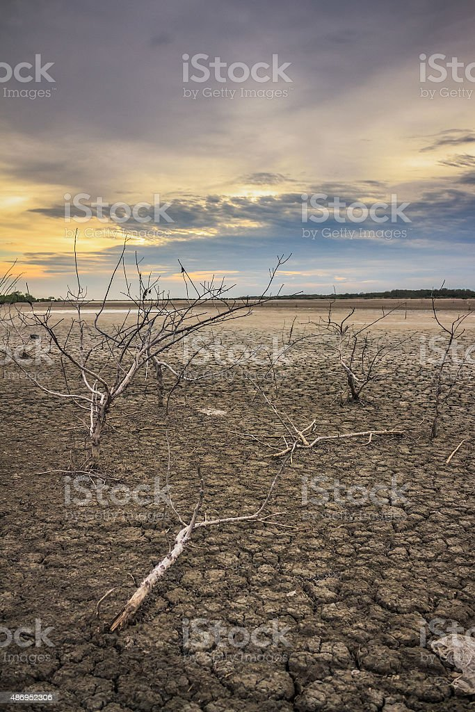 Barren ground sunset stock photo