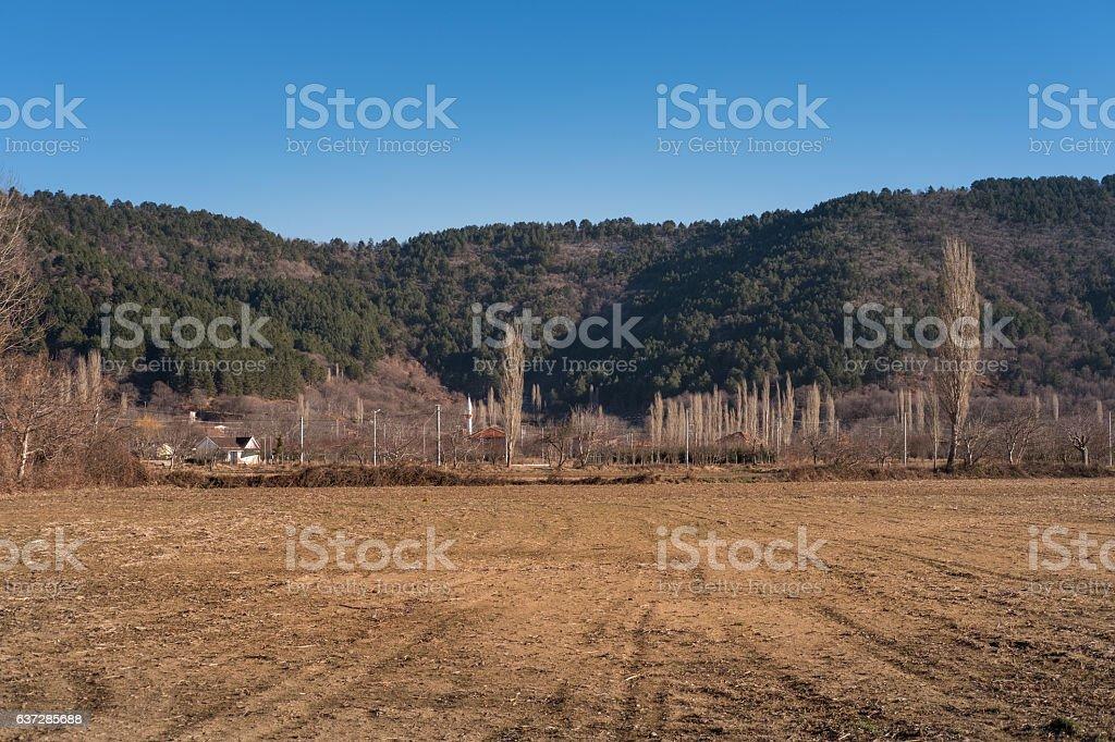 Barren lands in winter stock photo