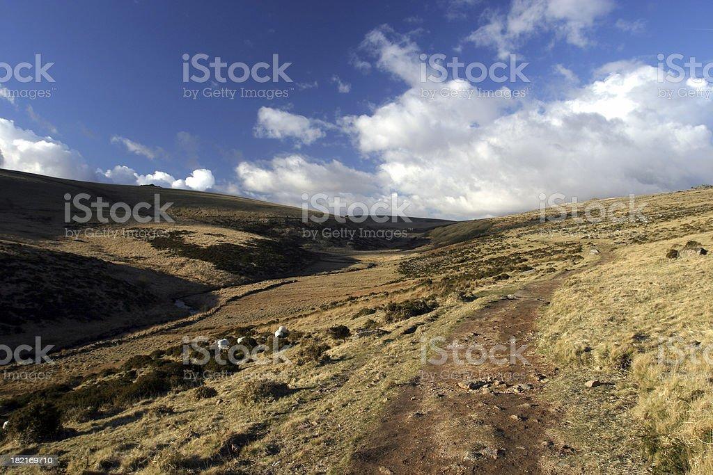 Barren moorland 4 stock photo