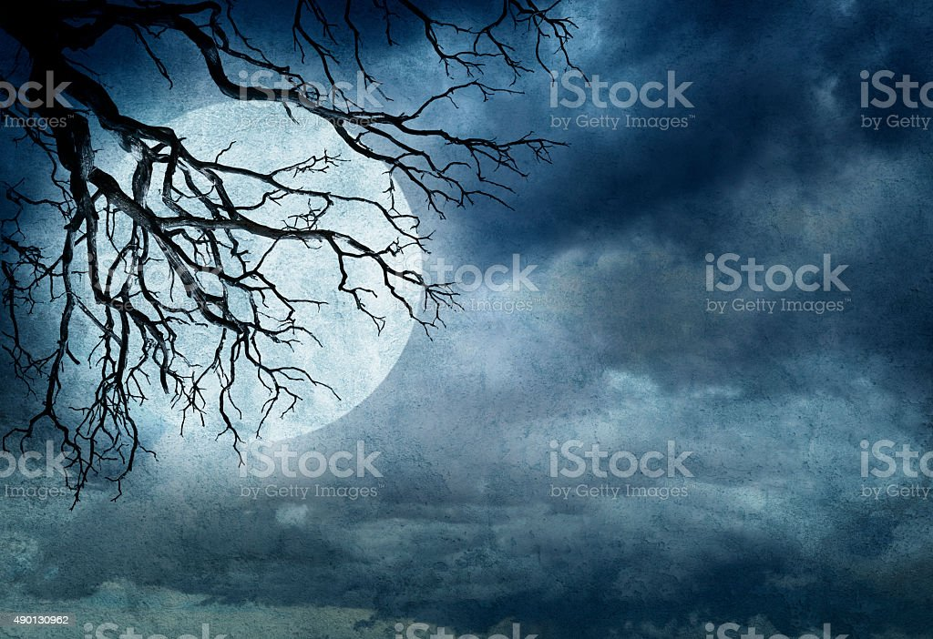 Barren Tree Sihouetted By Full Moon stock photo