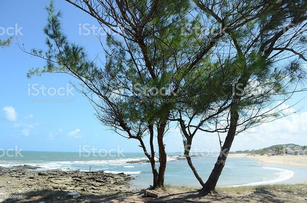 barreta beach stock photo
