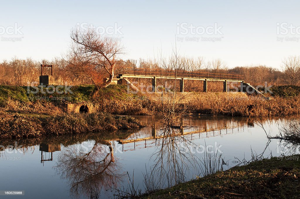 Barriers in swamp stock photo
