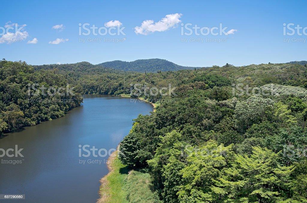 Barron River and Rainforest stock photo