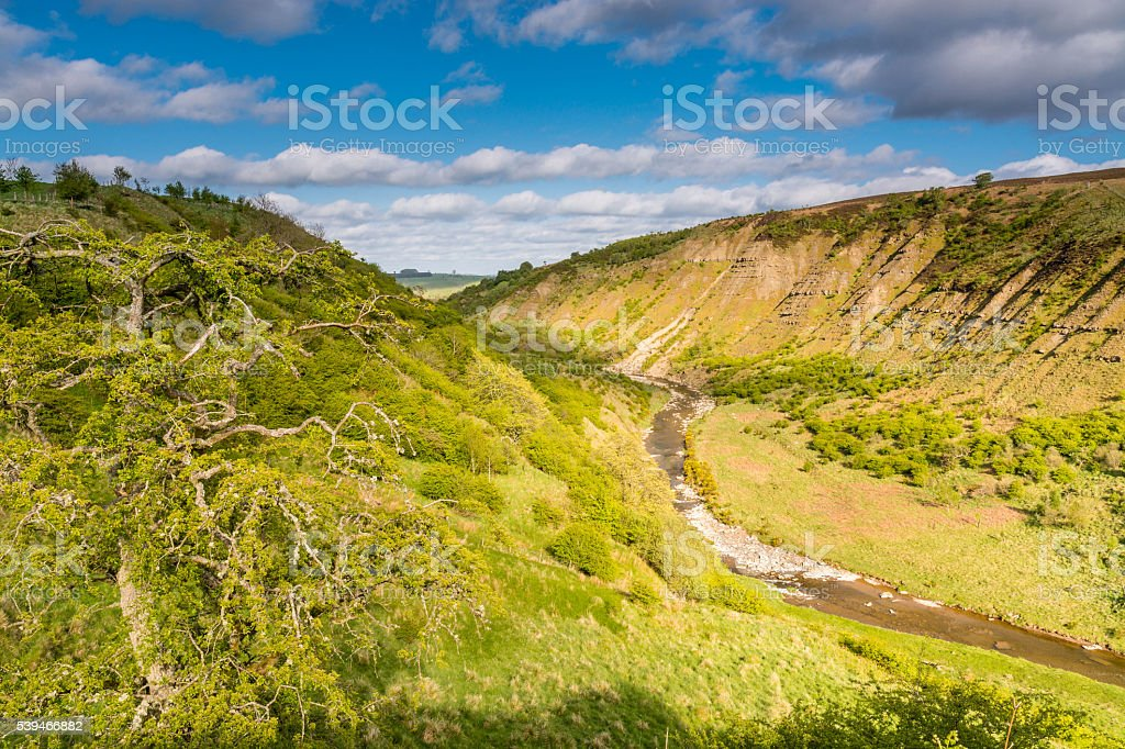 Barrow Scar in Upper Coquetdale stock photo