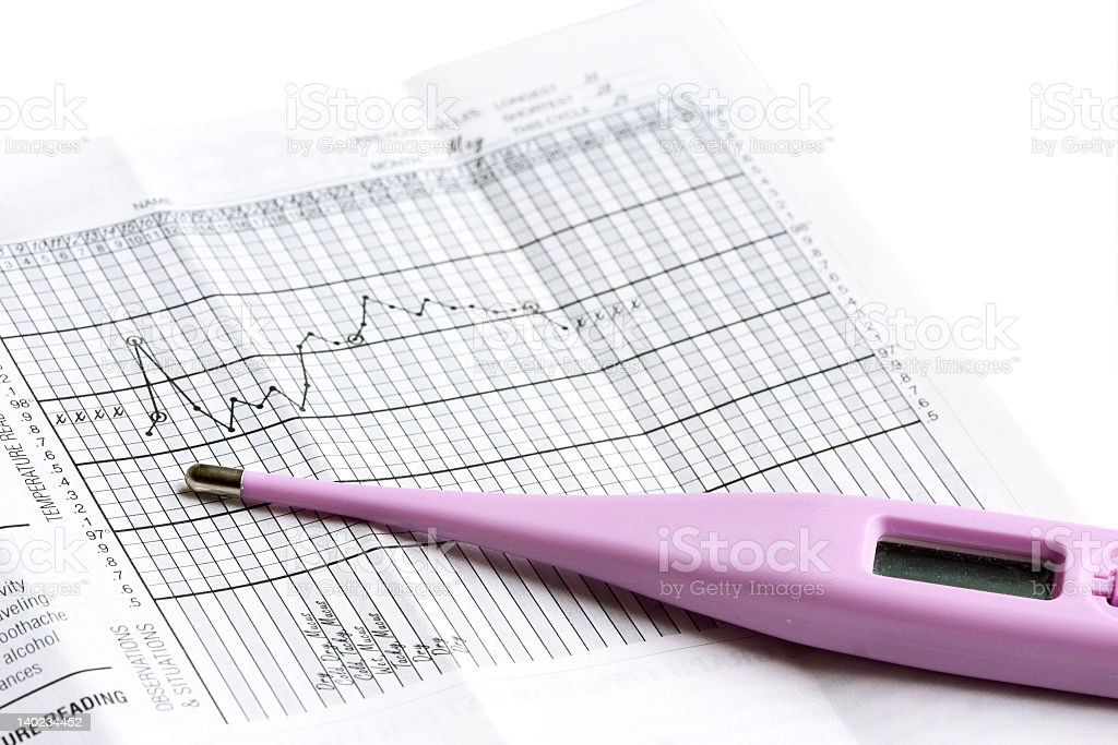 A basal thermometer and food hygiene reports stock photo