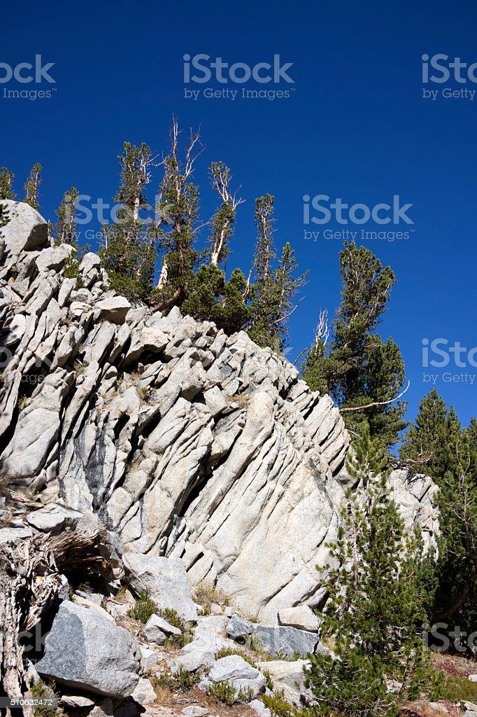 Basalt Creep with Tree Riders stock photo