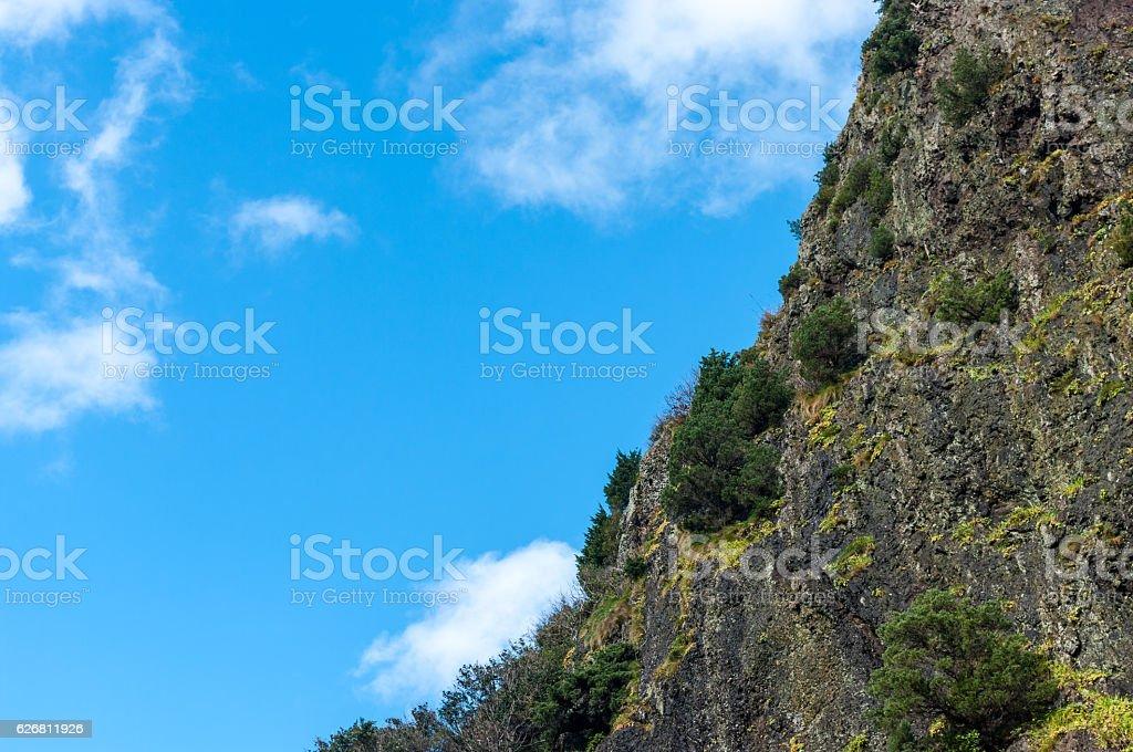Basaltic rock at Dodong port, Ulleungdo island,korea,asia stock photo