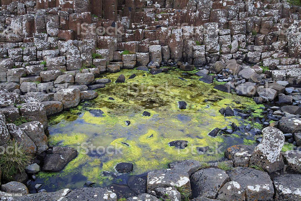Basaltic rock details of the Giant's Causeway, Ireland. royalty-free stock photo