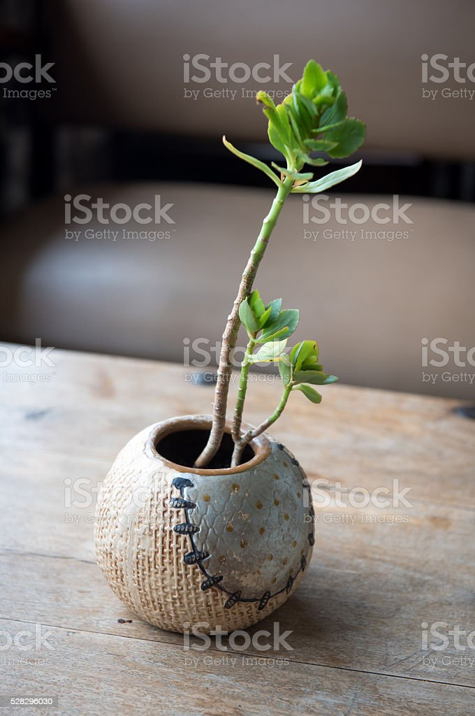 Base ball vase stock photo