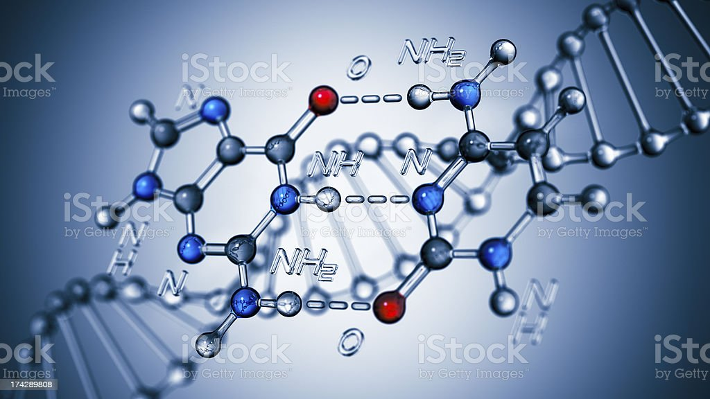 Base Pairing Of DNA stock photo