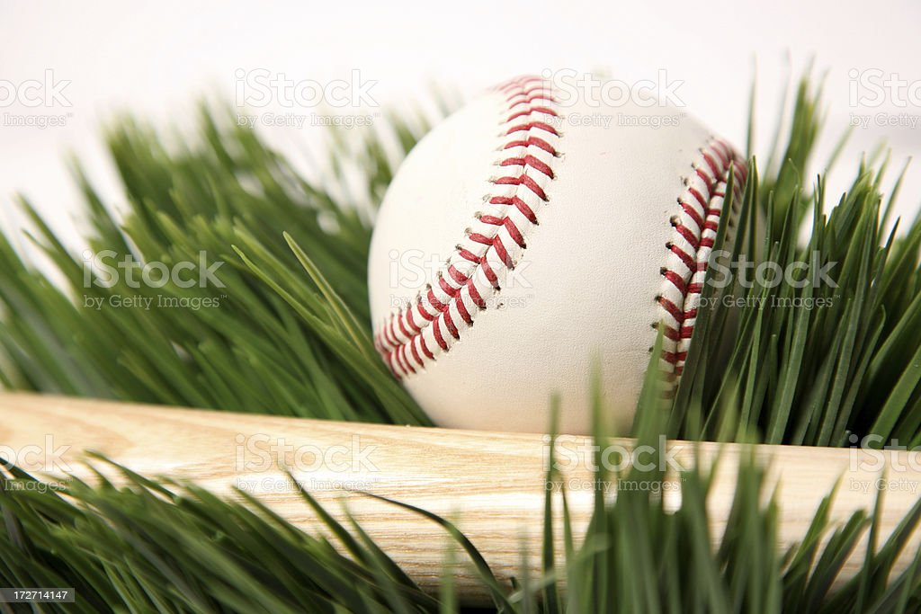 Baseball and bat royalty-free stock photo