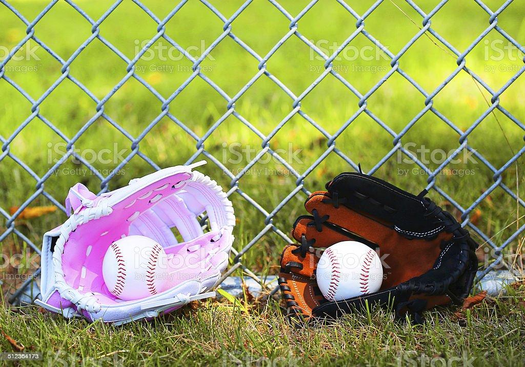 Baseball. Balls in Gloves on Green Grass. Female vs Male stock photo