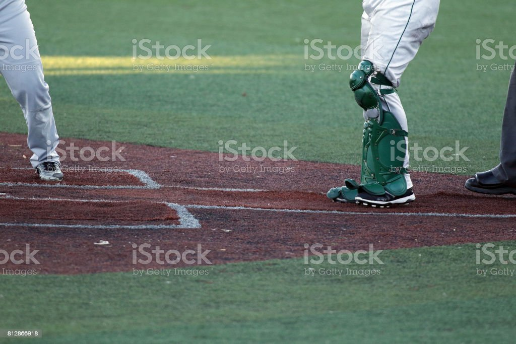 Baseball Catchers leg protection gear stock photo