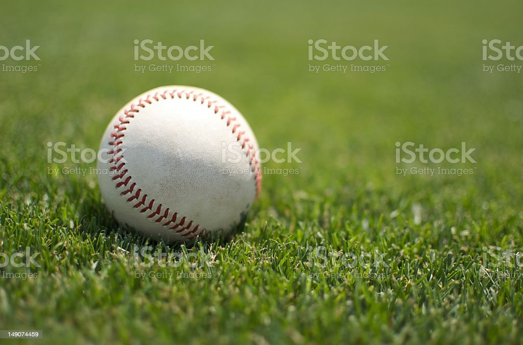 Baseball close up on the grass stock photo