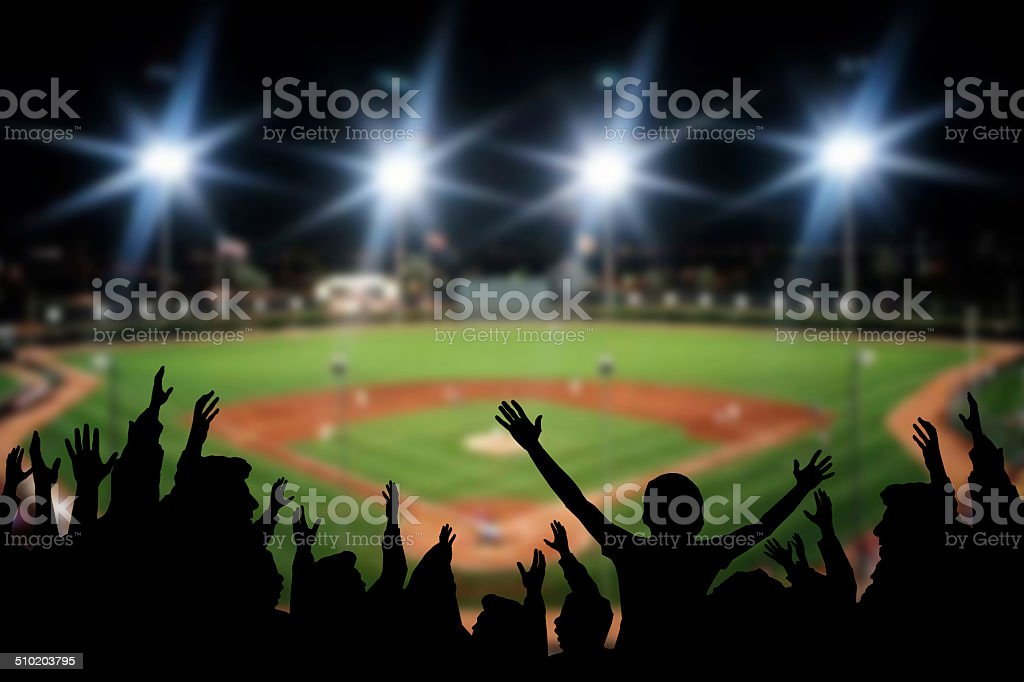 Baseball Excitement stock photo