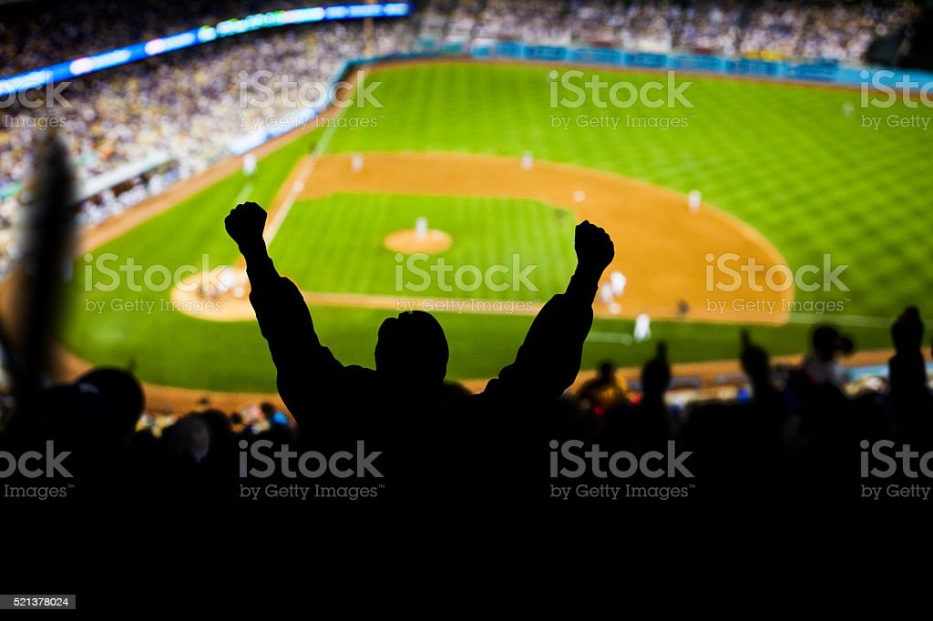 Baseball Excitement stock photo