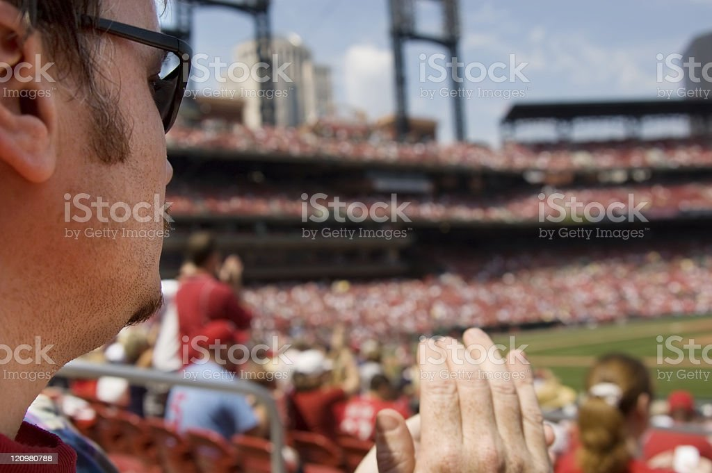 Baseball Fan stock photo