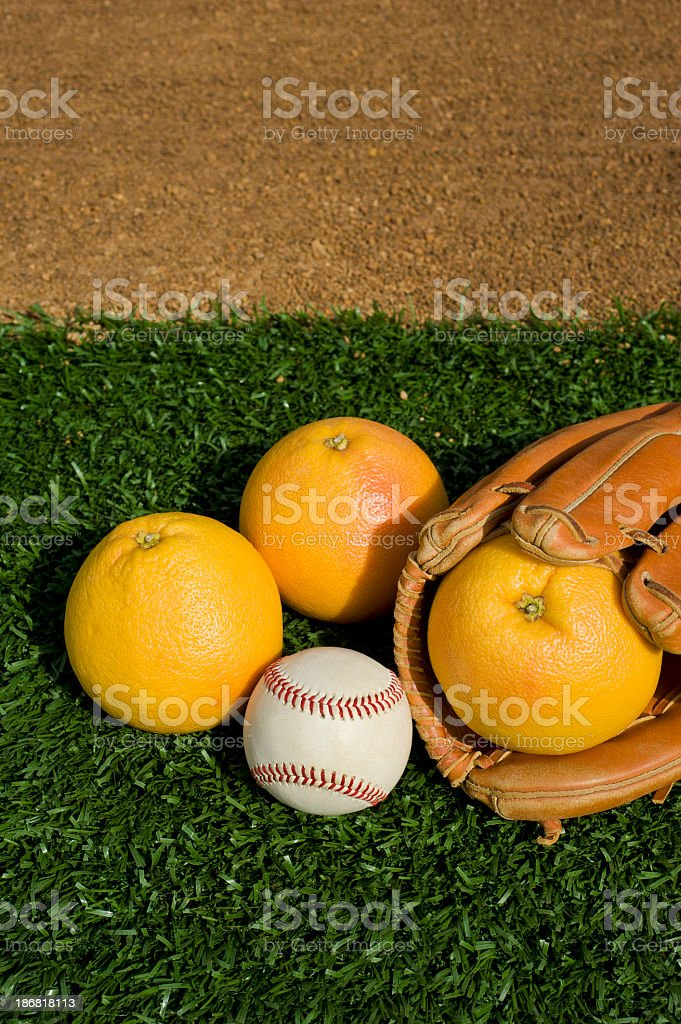 Baseball Grapefruit League royalty-free stock photo