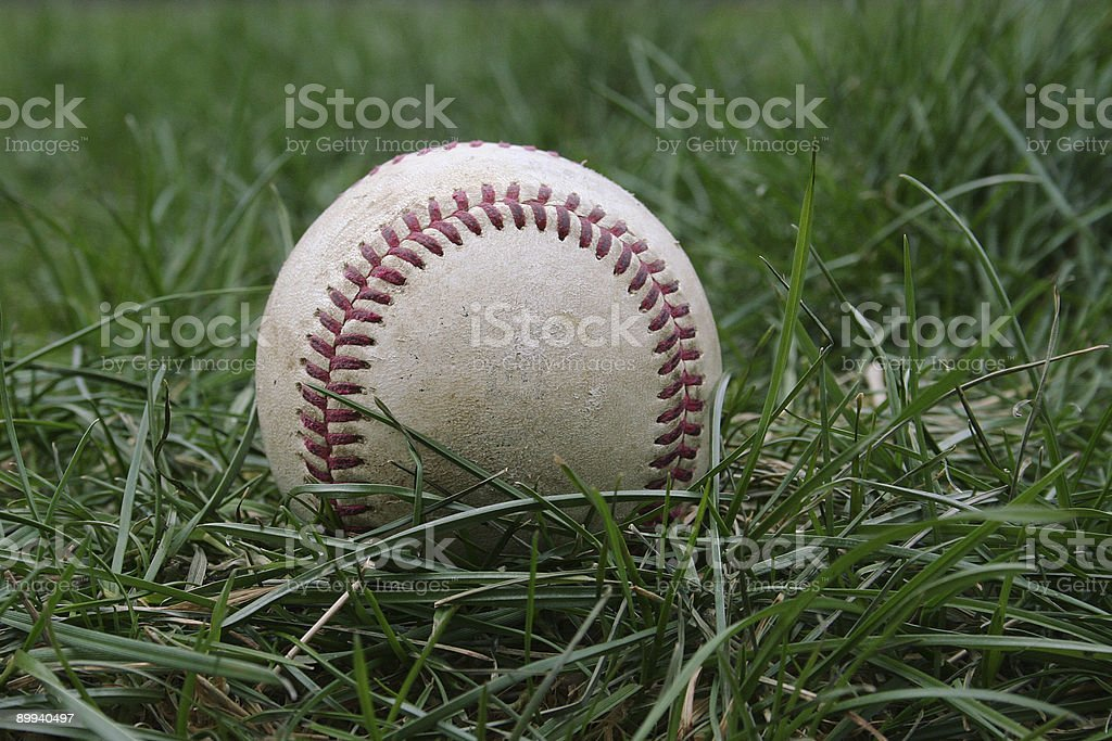 Baseball in the Grass 2 stock photo