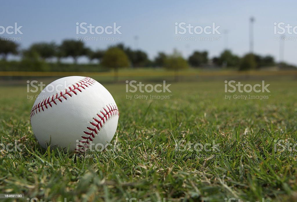 Baseball in the Outfield stock photo