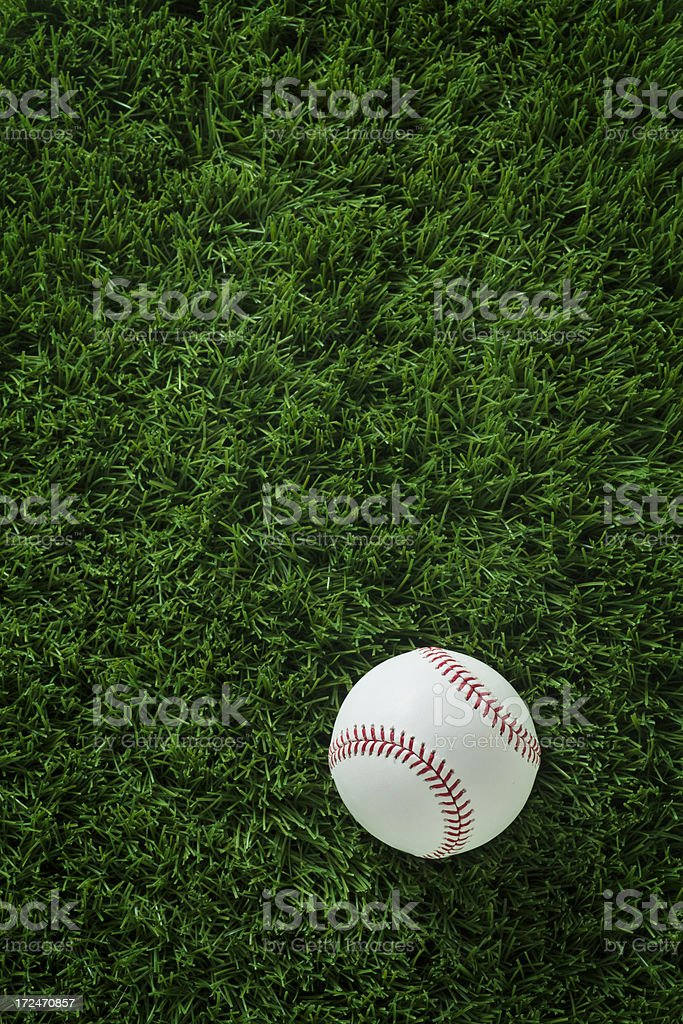 Baseball Laying in the Grass stock photo