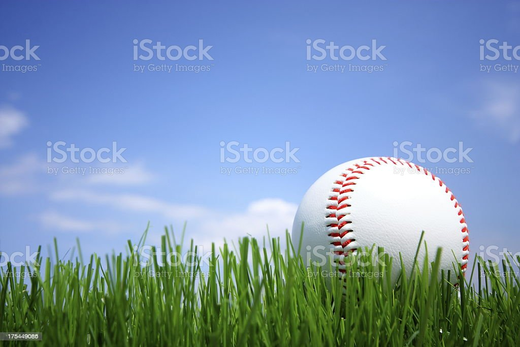 Baseball laying on the grass floor stock photo
