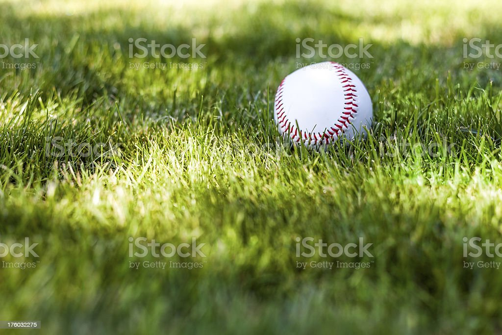 Baseball on a grass II royalty-free stock photo