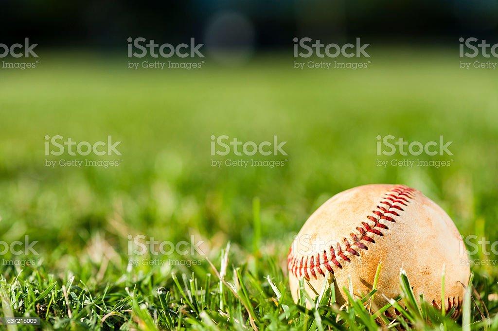 Baseball on Grass Field stock photo