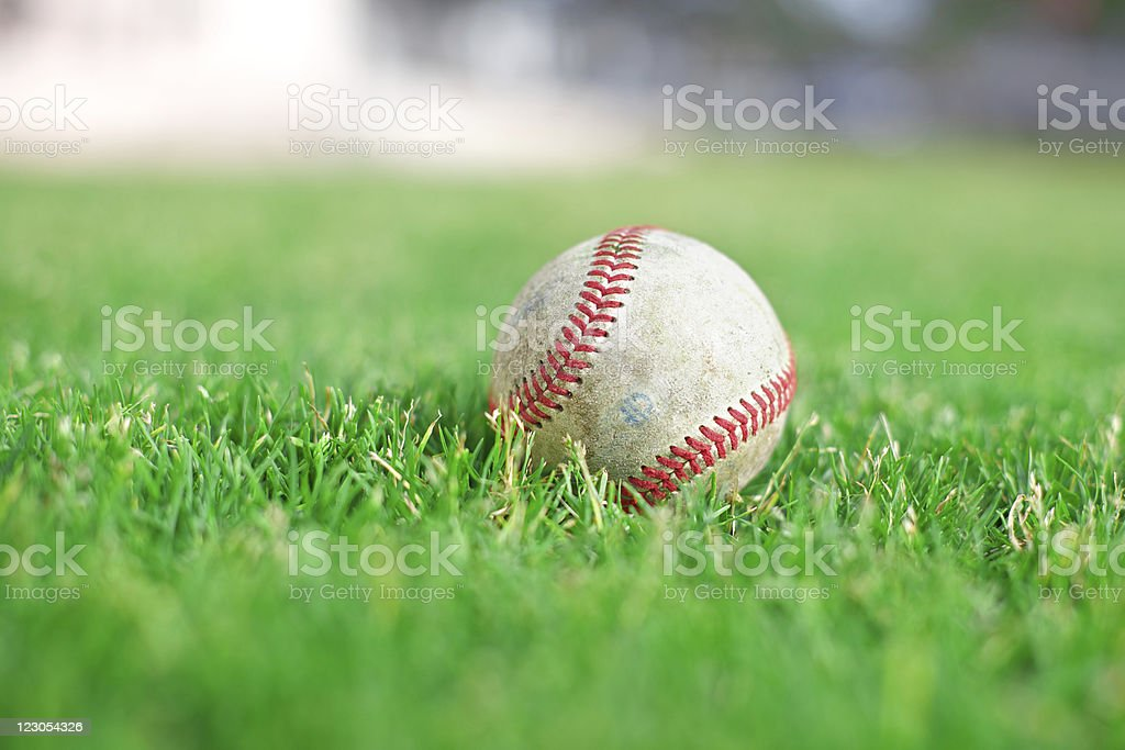 Baseball on green grass field stock photo