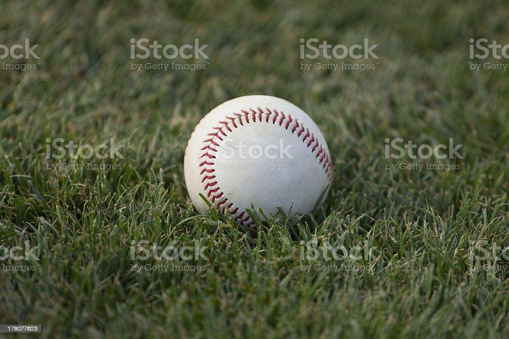 Baseball on infield grass royalty-free stock photo