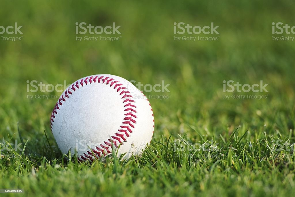 Baseball on the grass royalty-free stock photo