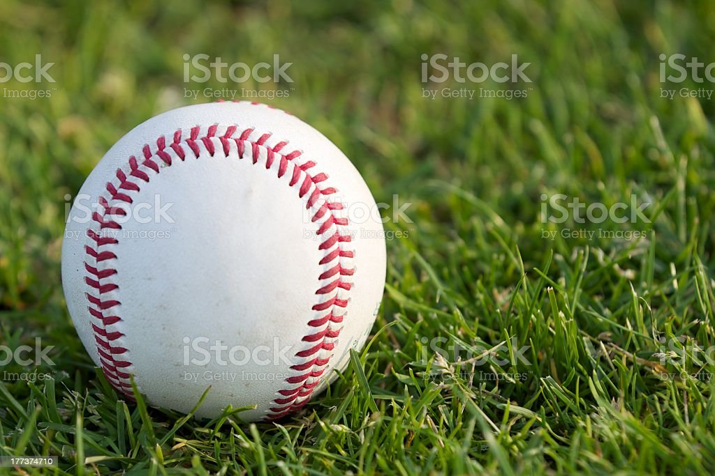 Baseball on the grass stock photo