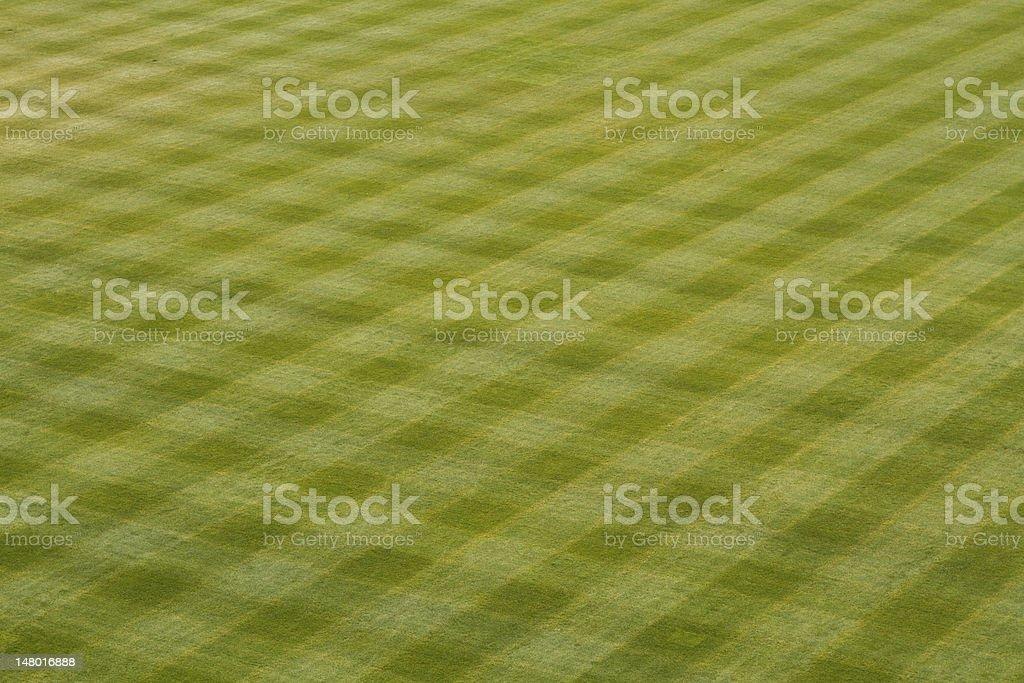 Baseball Outfield Grass stock photo